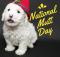 12022016_national-mutt-day