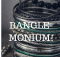 12202016_bangles