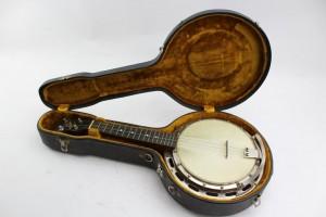 spotlight banjolele